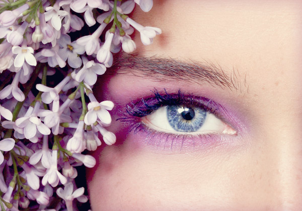 image courtesy of Olga Ekaterincheva/Shutterstock.com